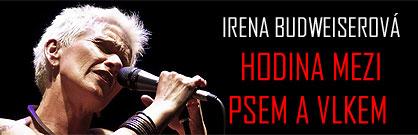 Irena Budweiserová: Hodina mezi psem a vlkem